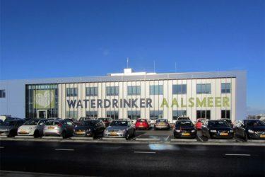 Waterdrinker in Aalsmeer